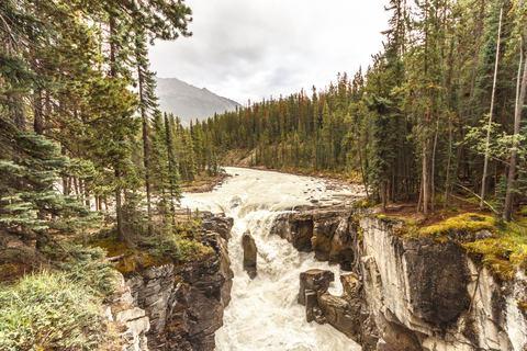 gallery/15-canada-jasper-sunwapta-falls.jpg,Sunwapta Falls