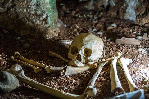 Museo Arqueologico la Cueva Del Paraiso
