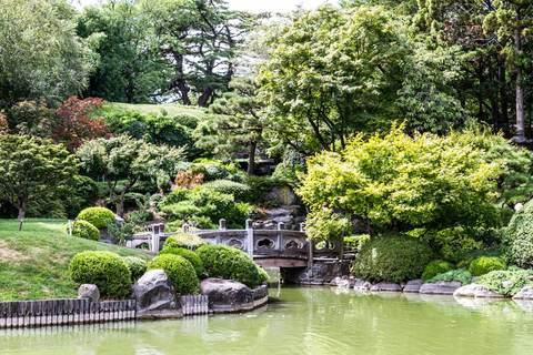 Japanischer See im Brooklyn Botanic Garden