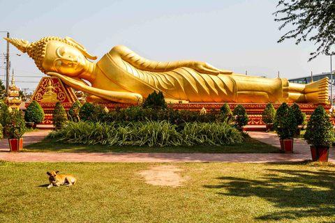 Reclining Buddah